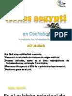 Aedes Aegypti Dr. Ruben Castillo q. Ssro 2017