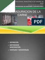 Maduracion Dela Carne Exposicion Procesos III (2)