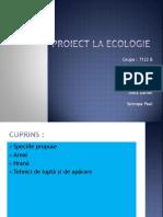 Proiect La Ecologie