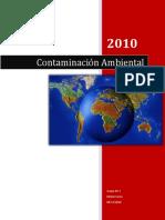 47218467-Contaminacion-Ambiental.docx