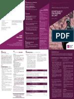 MASTER ESTHETICA Y FILOSOFIA DEL ARTE LILLE.pdf
