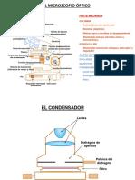 1microscopiomanejoPAS (2)
