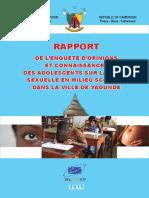 rapport enquete sante sexuel.pdf