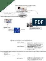 Mapa Mental de Los Elementos Que Integran El Proceso Del Cuidado