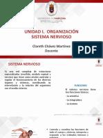 1. Organización%2c Sistema Nervioso - Copia