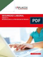 Seguridad laboral.pdf