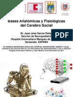 bases neurologica autismo.pdf