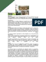 La Cultura Olmeca