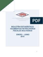 Boletin Estadistico Enero-Junio2010
