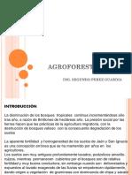 AGROFRESTERIA