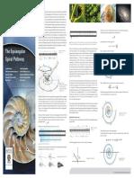 5 Alina Spiral_Poster.pdf