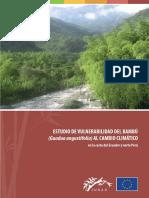 Estudio_de_vulnerabilidad_del_bambu.pdf