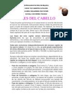 Fases Del Cabello