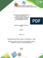 DEFINICION DE INDICADORES AMBIENTALES TRABAJO.docx