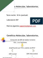 Extracción DNA RNA