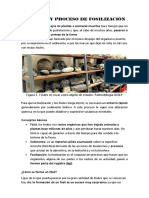 FÓSILES Y PROCESO DE FOSILIZACIÓN.docx
