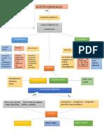 evidencia de producto- mapa conecptual aceites esenciales.docx