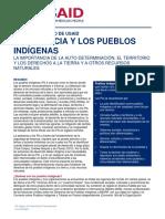 USAID Land Tenure Indigenous Peoples Brief Spanish 061214-1