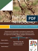 Diapositivas de Pasto y Forraje