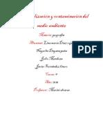 Industrialización y contaminación del medio ambiente.docx