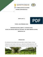 PASO 3 FINAL-SISTEMAS AGROFORESTALES.docx