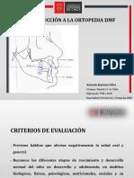 CIN 1 - Introducción a la Ortopedia DMF 2.pdf