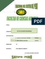 Informe Generalidades de La Micologia