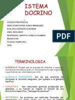 SISTEMA ENDOCRINO FINAL.pptx