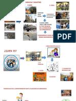 Guía de Trabajo Seguro Con Riesgo Electrico