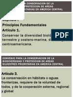 Exposicion Legislacion Ambiental Grupo 3