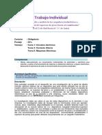 Guía de Trabajo Individual 2019-1