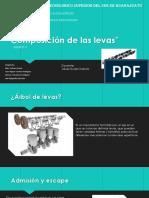 Composicion de Las Levas