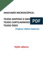 CLASE-5-TEJIDO-CONJUNTIVO-ESPECIALIZADO-II.pptx