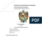Ambiental p1 Informe Medio Ambiente