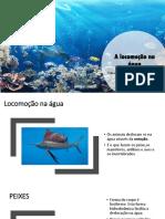 A locomoÇÃo aquatica
