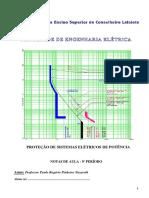 PROTECAO_I_-_PSE_-_2019.pdf