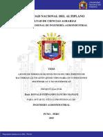 Sancho_Mamani_Ronald_Fernando.pdf
