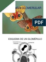 Clase Numero 2, Patologia Renal