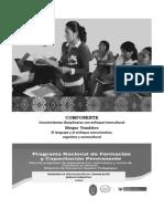 MÓDULO Lenguaje y Enfoque Comunicativo.pdf