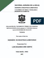 MEZARES SANCHEZ ROEL.pdf