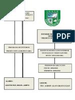 INFORME - PRODUCCIÓN DE CULTIVOS.docx