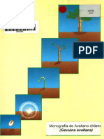 Monografía INFOR Avellano.pdf