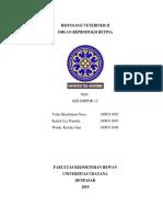 PAPER HISTO VET II (REPRO BETINA)(2).docx