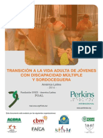 Transicion_vida_adulta_disca_mult.pdf