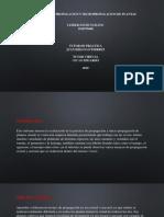 INFORME DE PROPAGACION Y MICROPROPAGACION DE PLANTAS.pdf