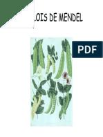 Lois de Mendel