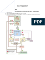 Taller  - Fis Rep Femenina_2019-1.pdf