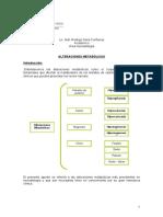 Alteraciones_Metabolicas