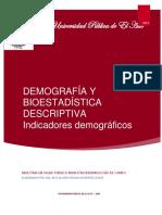 Texto indicadores demográficos