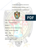 informe topo 003.docx